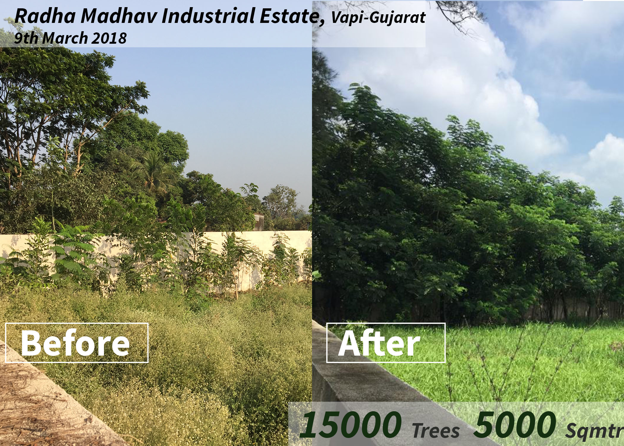 Radha Madhav Steel before and after